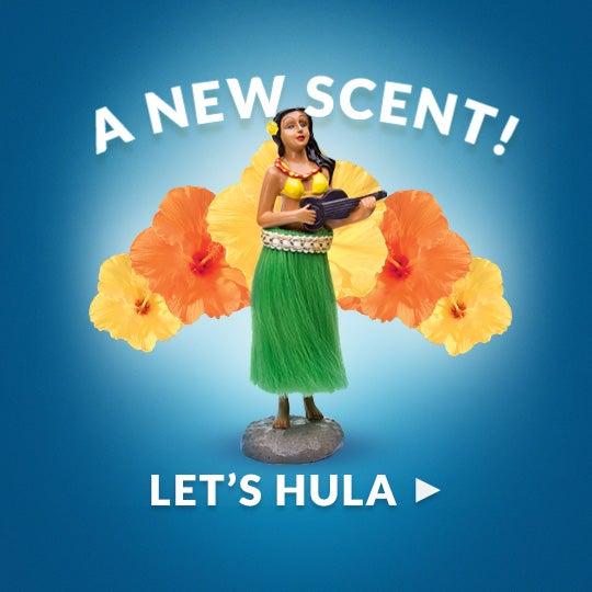 LEARN TO HULA!