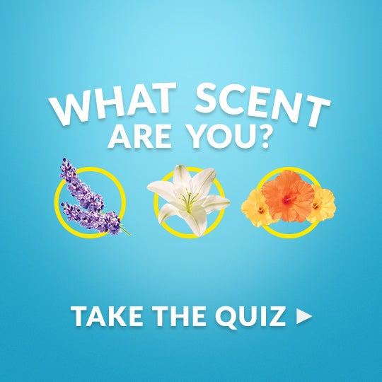 <p>	TAKE THE QUIZ</p>