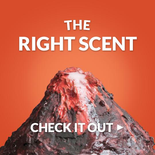 Science fair volcano?